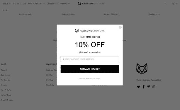 E-Mail Listenaufbau aus der E-Commerce Shopify Szene. Gegen einen Rabatt von 10% ist es üblich, dass sich hier Menschen eintragen. Hier wird auch schön mit psychologischen Triggern gespielt (This wont appear twice - wer glaubt... :-) )